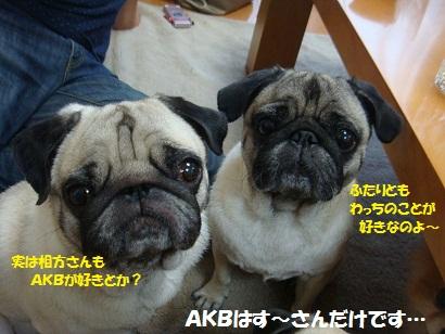 DSC00774_20120211031211.jpg