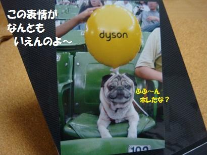 DSC01196_20120207203650.jpg