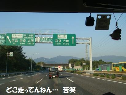 DSC01636.jpg