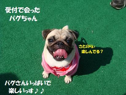 DSC01716_20120314033753.jpg