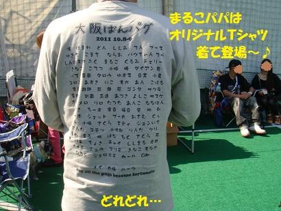 DSC01741_20120312042448.jpg