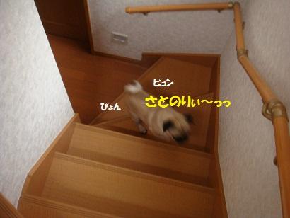 DSC01892_20120218195237.jpg