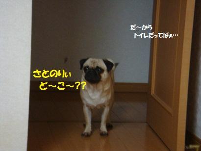 DSC01944_20120218030924.jpg