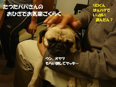 DSC01954_20120318050418.jpg