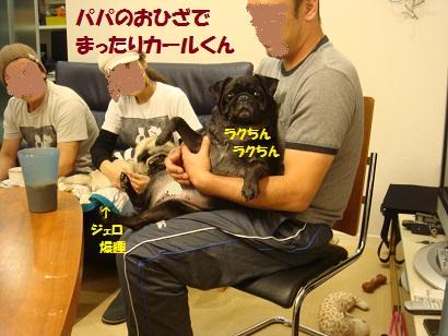 DSC01966_20120318050418.jpg