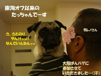 DSC01982_20120315013106.jpg