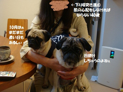 DSC02059_20120318065150.jpg