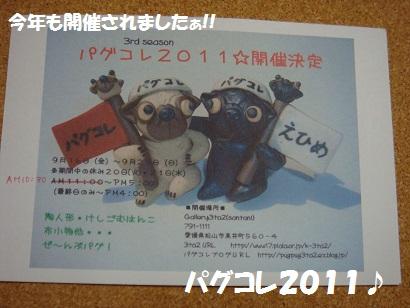 DSC02081_20120223033447.jpg