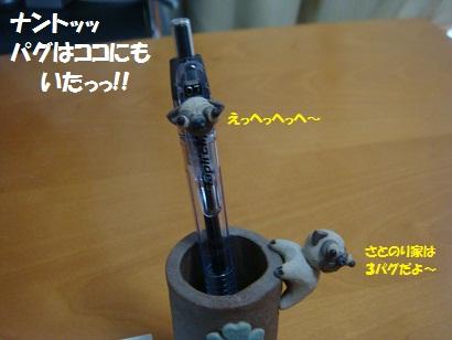 DSC02112_20120225163002.jpg
