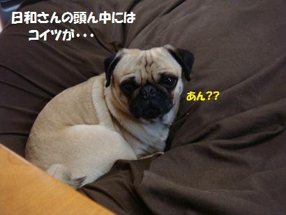 DSC02118_20120225160938.jpg