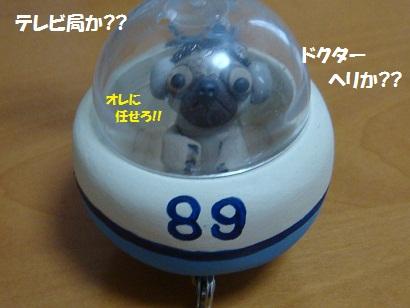 DSC02149_20120225165205.jpg
