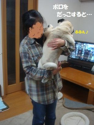 DSC02747_20120301195459.jpg