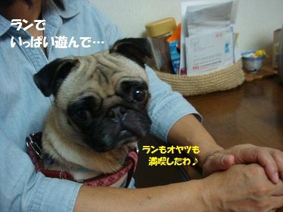 DSC02837_20120404034658.jpg