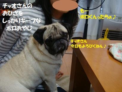 DSC02915_20120329030251.jpg