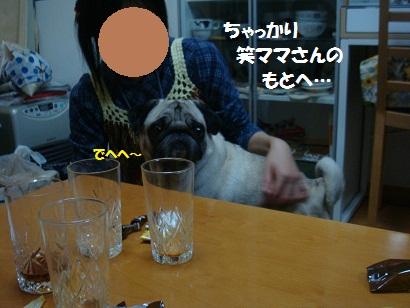 DSC02936.jpg