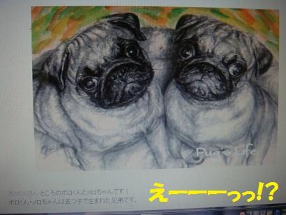 DSC03214.jpg