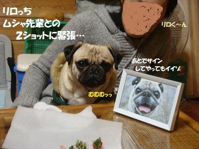 DSC03338_20120217000441.jpg