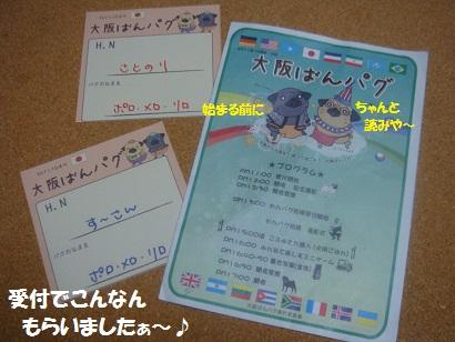 DSC03511_20120311054143.jpg