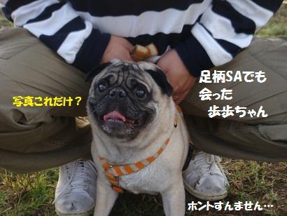 DSC03511_20120409132156.jpg