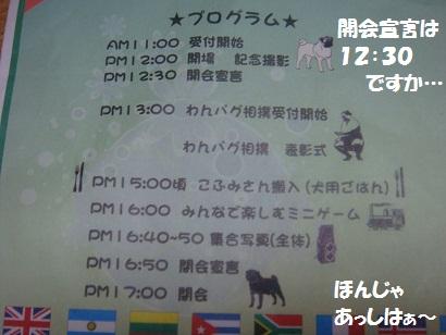 DSC03512_20120311225502.jpg