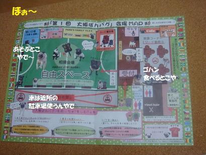 DSC03514_20120311054142.jpg