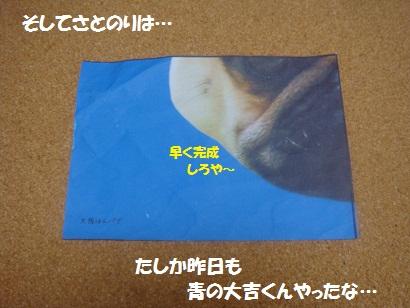 DSC03519_20120322200832.jpg