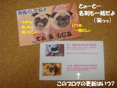 DSC03546_20120312034327.jpg
