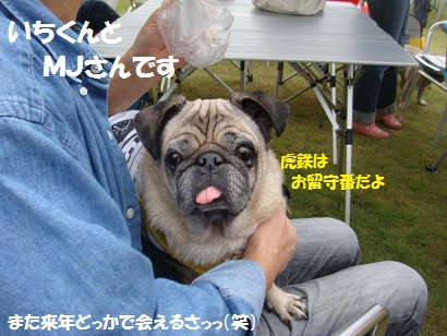 DSC03631_20120405051203.jpg