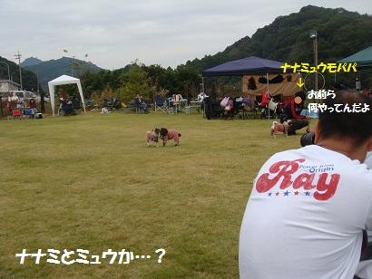 DSC03648_20120407043431.jpg