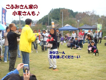 DSC03712_20120409170320.jpg