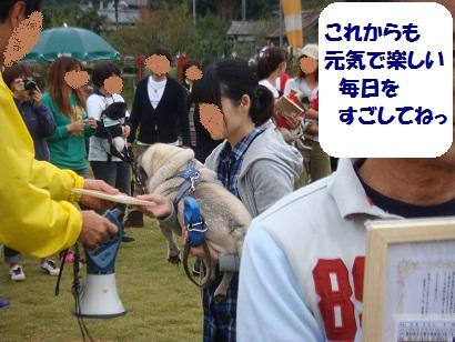 DSC03722_20120409172546.jpg