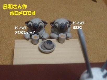 DSC03804.jpg