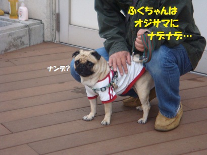 DSC03945_20120412223921.jpg