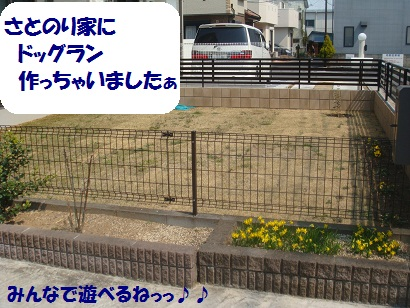 DSC04209_20120404044733.jpg