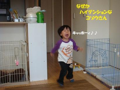 DSC04546_20111115131816.jpg