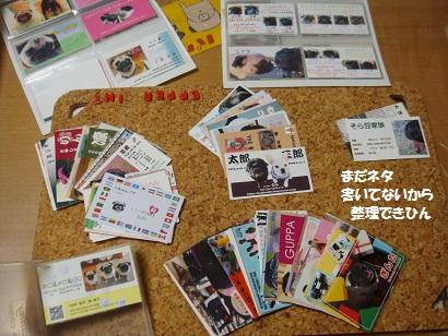DSC04708_20111112024821.jpg