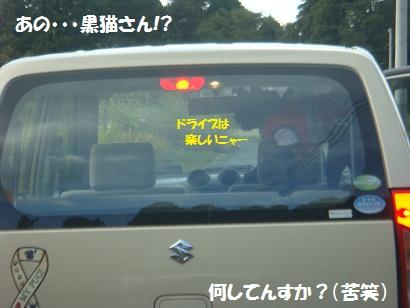 DSC04725_20120422204158.jpg
