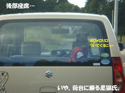 DSC04727.jpg