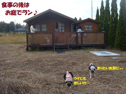 DSC04766_20120422210004.jpg