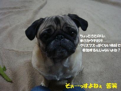 DSC04913_20111231031315.jpg
