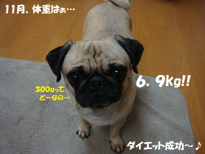 DSC04918_20111116030658.jpg