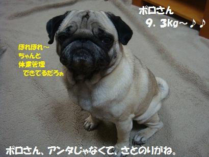 DSC04925_20111116000256.jpg