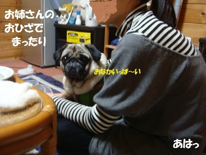DSC04942_20120216211130.jpg