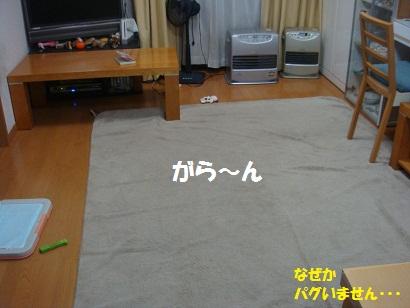 DSC05026_20111122033950.jpg