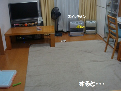 DSC05027_20111122033950.jpg