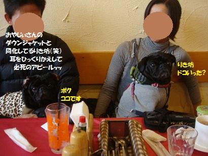 DSC05091_20120425190619.jpg