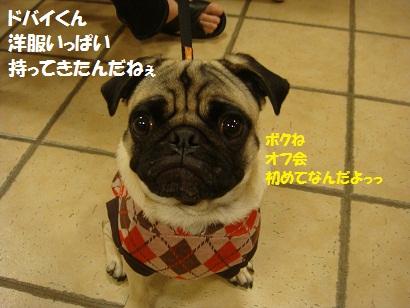 DSC05343_20120427184936.jpg