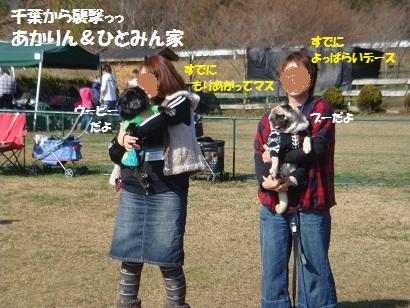 DSC05497.jpg