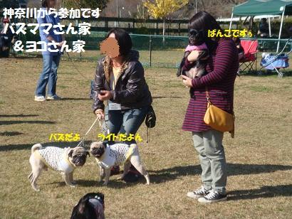 DSC05508_20120430222154.jpg