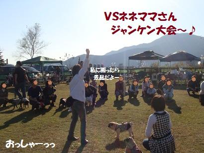 DSC05671_20120503161614.jpg